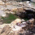 Το Ιερό των Πηγών στο Φλεριό