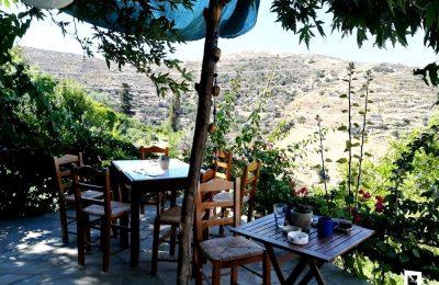 Το παραδοσιακό καφενείο μέσα στα πλατάνια και τις καρυδιές